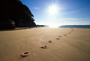 Footprints in the sand, Mosquito Bay, Abel Tasman National Park